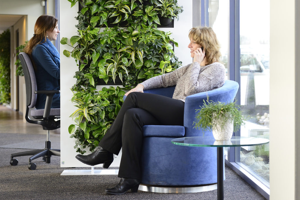 LiveDivider ist ein gesunder grüner Raumteiler